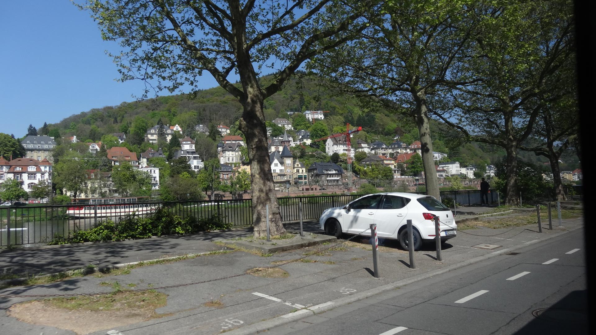 Blick über den Neckar