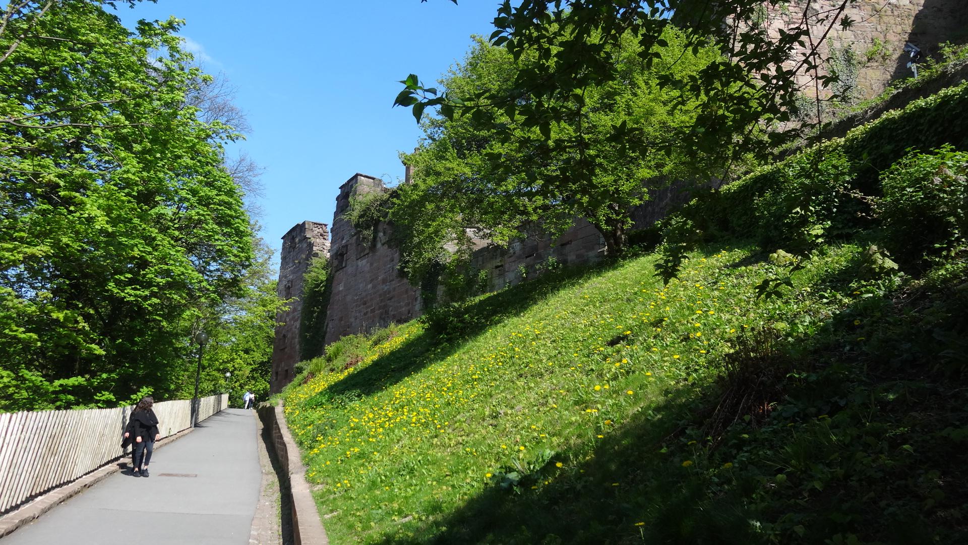 Weg zum Schlosspark mit Schlossruine rechter Hand